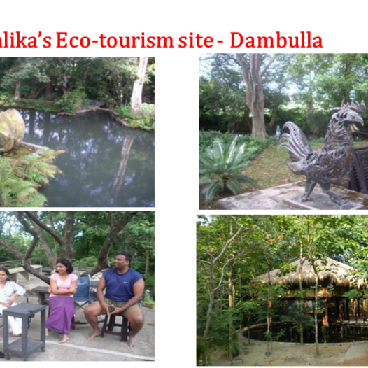 Eco-tourism site – Dambulla
